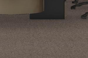 Carpet Tile 2165
